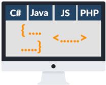Coding skills, Използване на програмен език