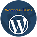 WordPress Basics - март 2017 icon