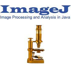 image processing with imagej pdf